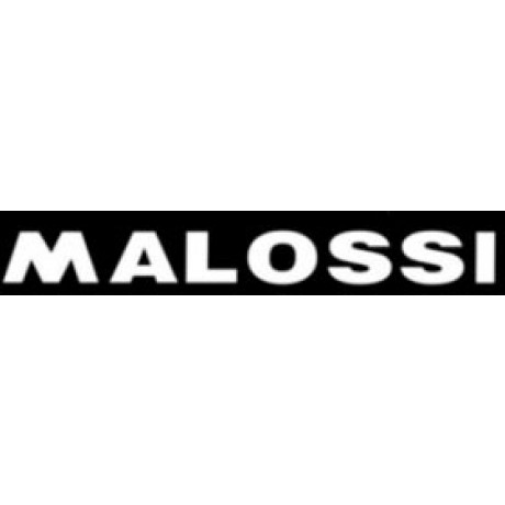 STICKER MALOSSI-WOORD WIT  GROOT